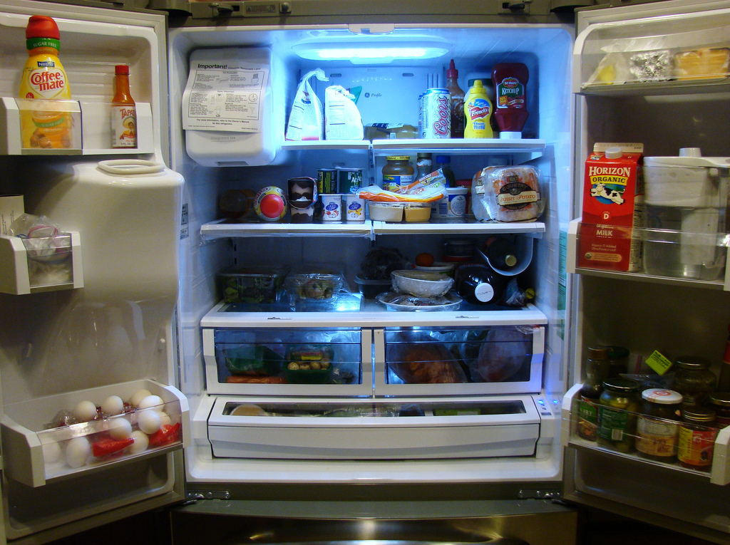Best Refrigerator Temperature To Keep Food Fresh Wise